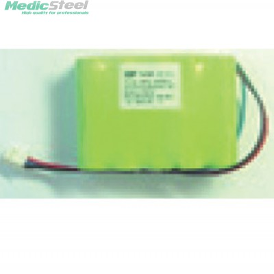 Ni MH 12V BATTERY models up to january 2006